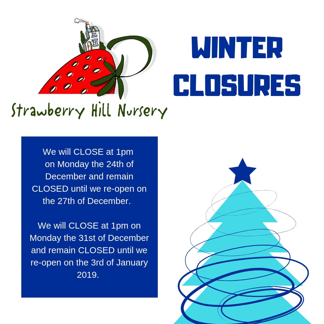 Strawberry WINTER CLOSURES (5)